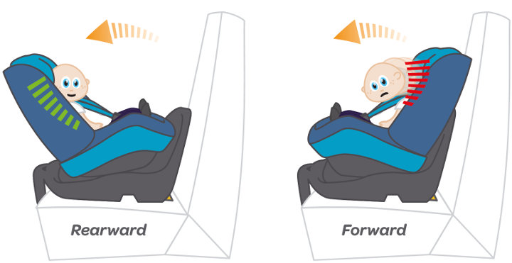 Baby illustration in forward and rearward facing car seat positions